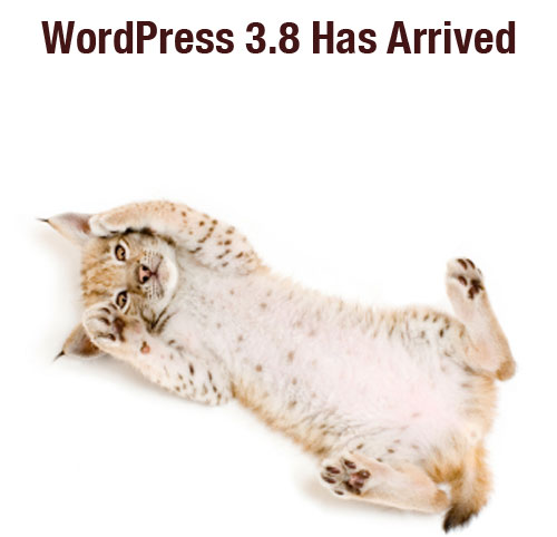 WordPress 3.8 has arrived