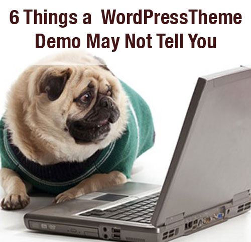 6 Things a  WordPressTheme Demo May Not Tell You