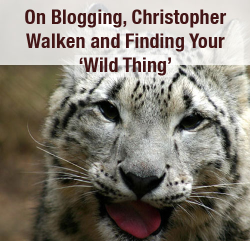 wild-thing-blogging