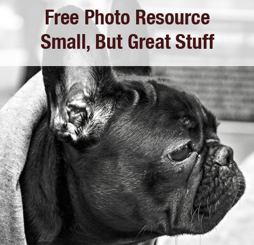 free photo resource
