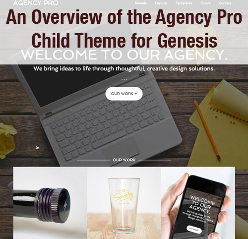 Agency Pro Child Theme for Genesis Overview