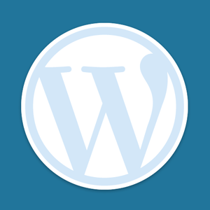 WordPress Code or Plugins? Where is the Line Drawn?