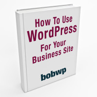 how-to-use-WordPress-for-biz-site