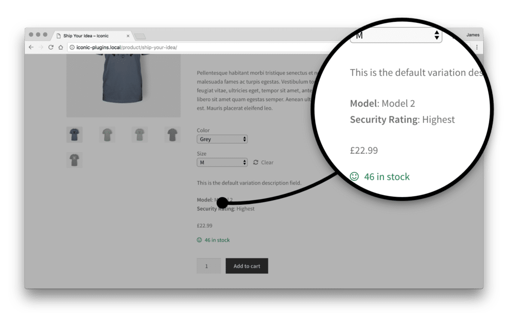 , How to Add Custom Product Fields to Variations in WooCommerce, Rojak WP